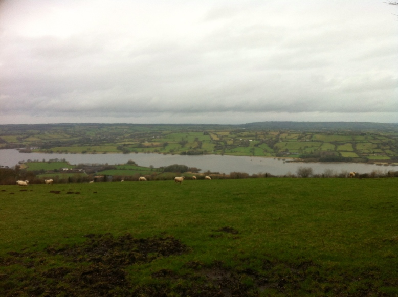 Views across Blagdon Lake