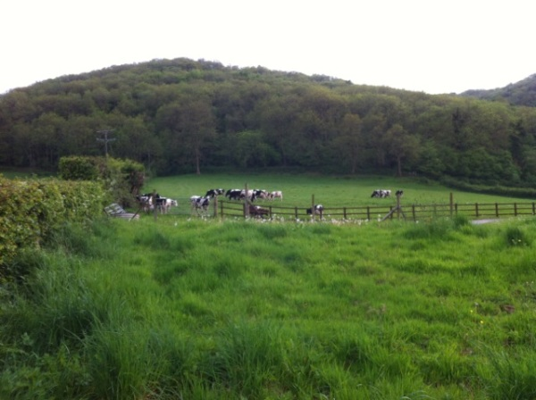 The Chew Valley - home of 'Yeo Valley Yogurt'