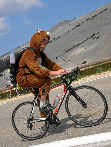Mad bear on the Ventoux